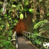 Lava tube volcano tour from Oahu