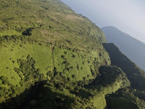 green cliffs of Hamakua