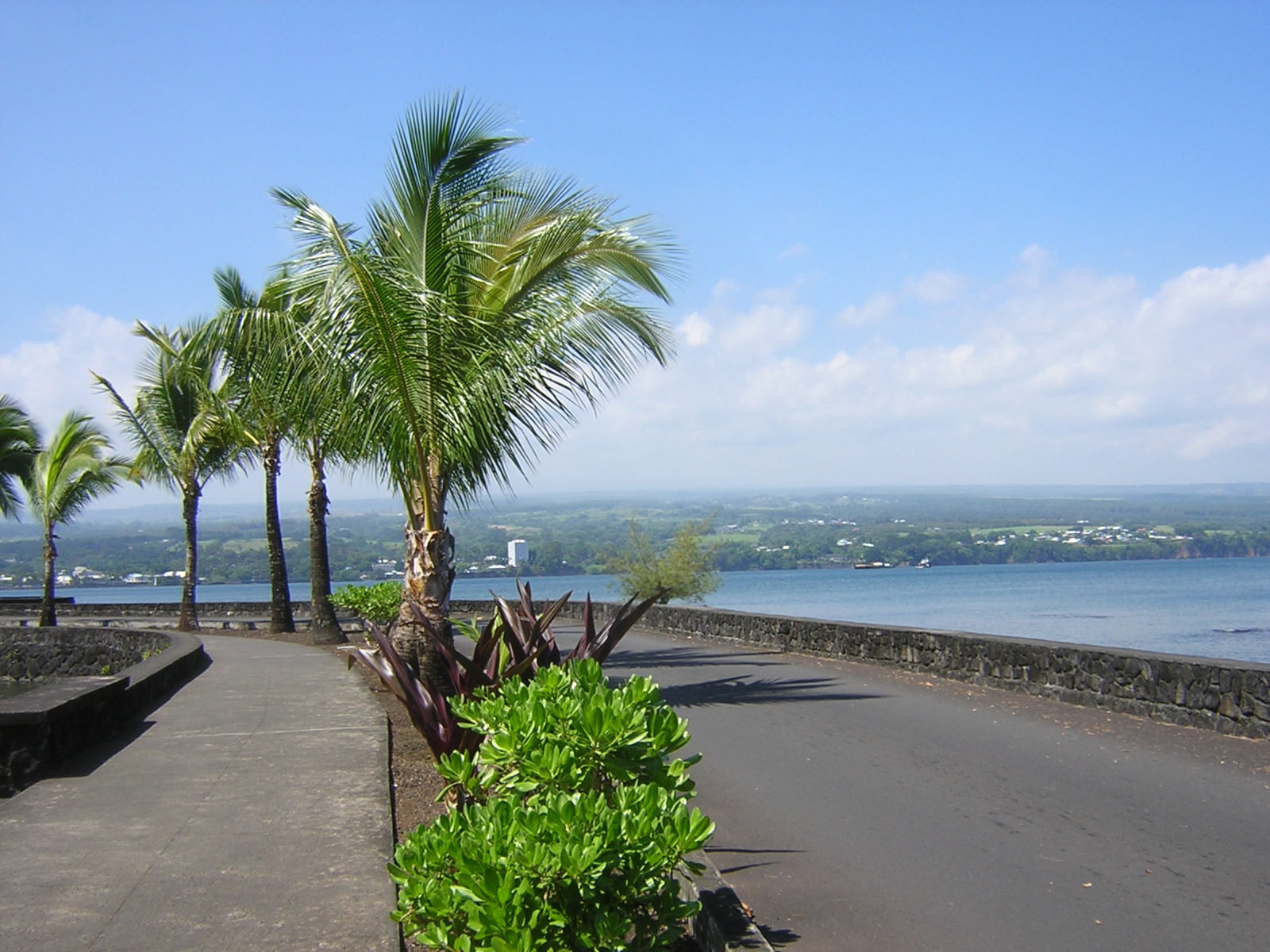 Visiting Hilo – 5 Must-See Attractions