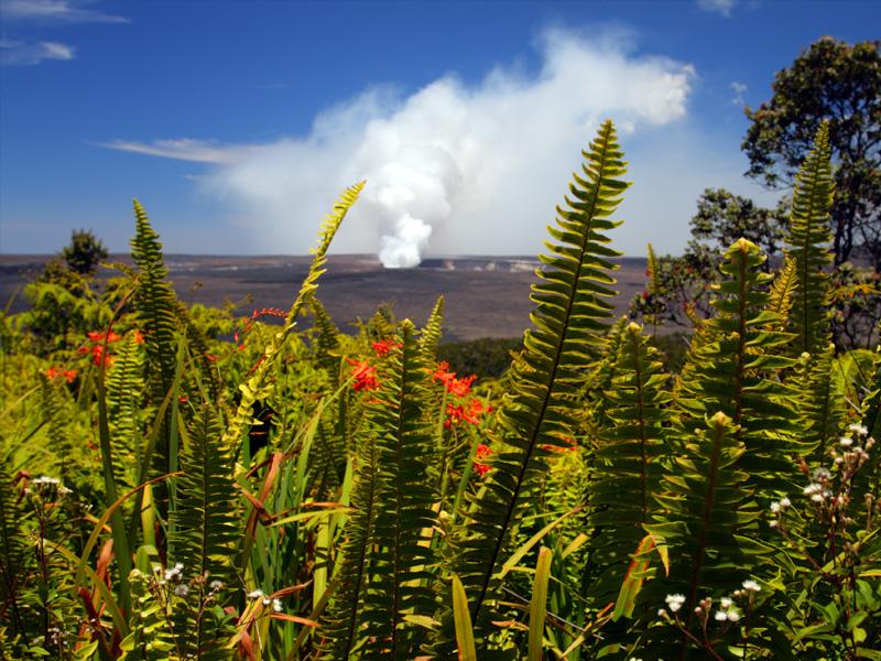 Big Island Circle Plus Volcano
