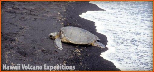 black-sand-beach-on-big-island-of-hawaii ⋆ Hawaii Volcano ...